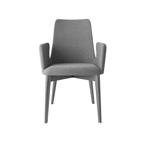 Etoile: Contemporary Upholstered Armchair
