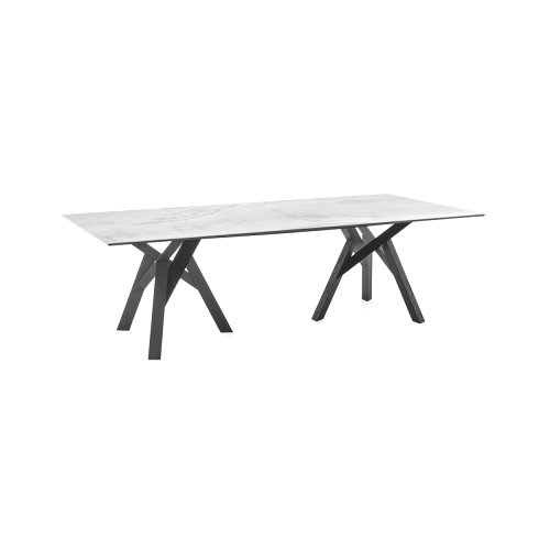 Jungle: Branched-Wood-Base Table