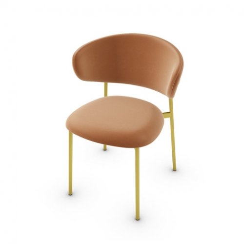 CS2031 OLEANDRO Frame P175 met. POLISHED BRASS Seat SLS Softer COGNAC